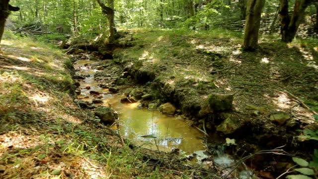 "vídeos de stock, filmes e b-roll de pan da esquerda para a direita-creek na localidade ""devil ' s town"", sérvia - erodido"