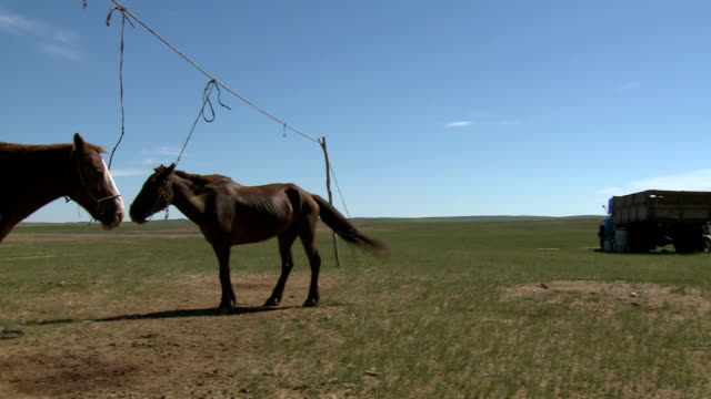 Pan From Traditional Mongolian Ger To Steppe Horses video