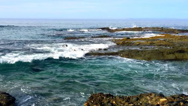 pan der strand ocean reef - gold waschen stock-videos und b-roll-filmmaterial