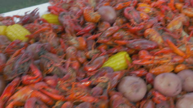 pan over a table loaded with a traditional louisiana crawfish boil - bollente video stock e b–roll