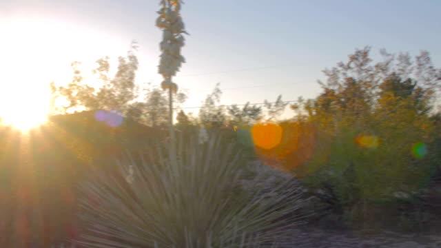 Pan Over Desert Landscape video