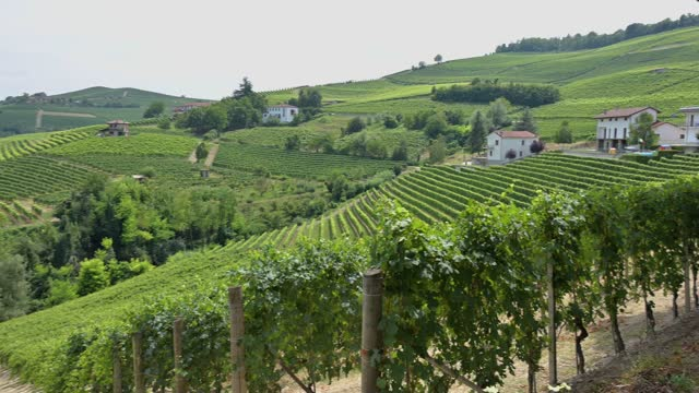 pan view of vigneti intorno barolo, langhe, il famoso vino italiano - langhe video stock e b–roll