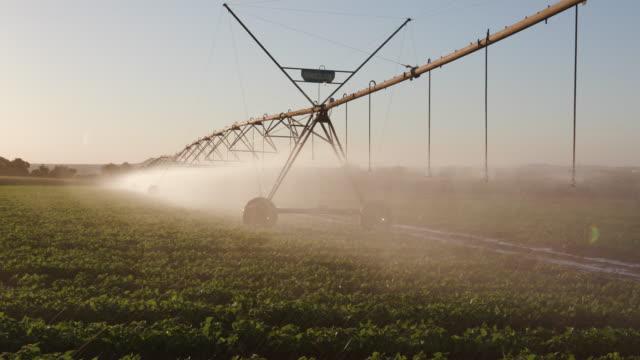 hinterleuchtete ansicht zentrum pivot irrigatiing gemüse schwenken - bewässerungsanlage stock-videos und b-roll-filmmaterial