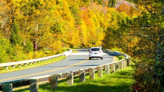 Panning From Trees to Vehicle on Autumn Colored BlueRidge Parkway video