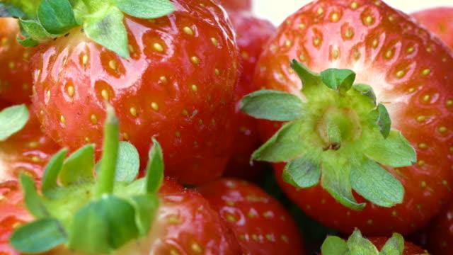 Panning over fresh strawberries video