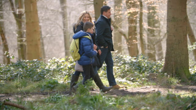 Panning shot following family of four walking through forest video