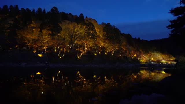 Panning shot Korankei Forest park night with light illumination Nagoya Japan video