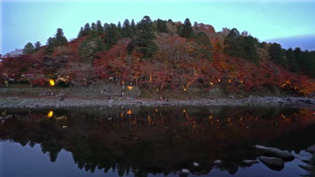 照明名古屋でパン ショットこうらんけい森林公園の夜 - トヨタ点の映像素材/bロール