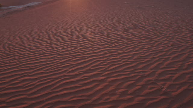4K panning shot of sand dunes of the sun setting in the background inside the Namib-Naukluft National Park video