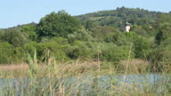 istock Panning shot of tall grass on the side of a lake with town behind 1291843520