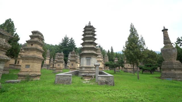 Panning shot: Shaolin Pagoda Forest Luoyang China video