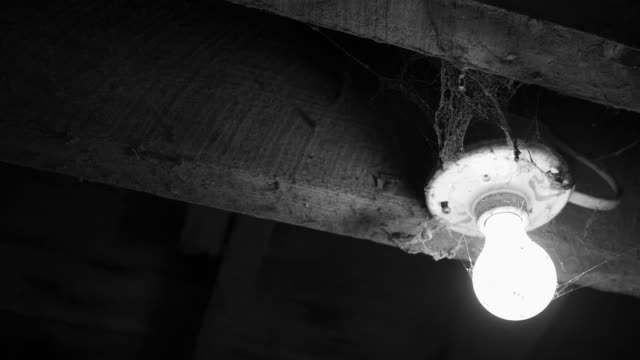 Panning to a light bulb covered in cobwebs - horror concept - black and white version