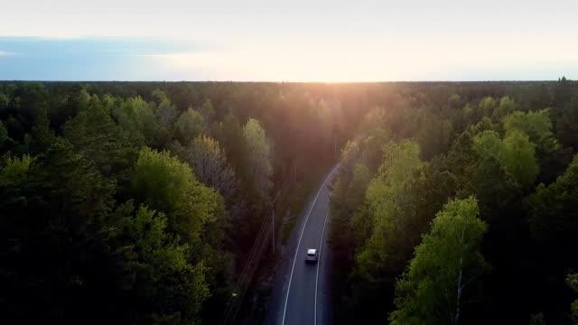 vídeos de stock, filmes e b-roll de auto movimentações do panorama através da floresta do pinho e do por do sol atrasado - veículo terrestre