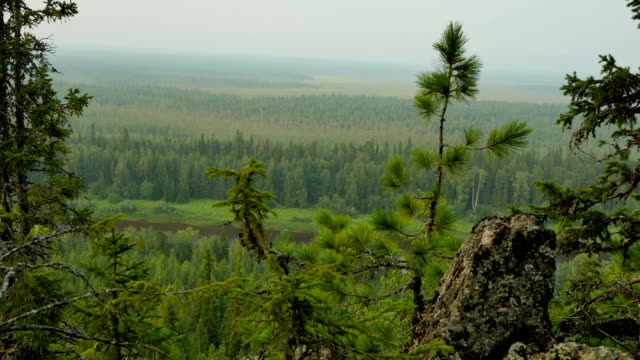 panorama from top hill to ural mountains - monti urali video stock e b–roll