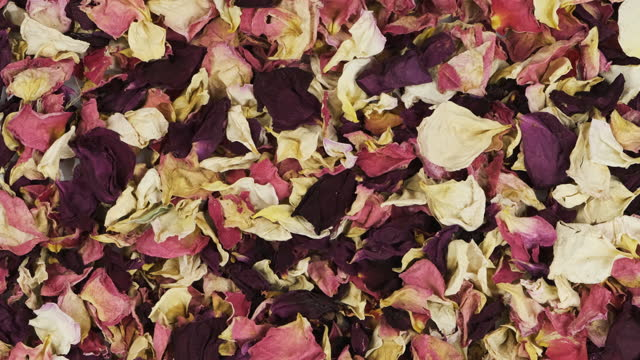 Panorama of a heap of dried rose petals. Floral background.