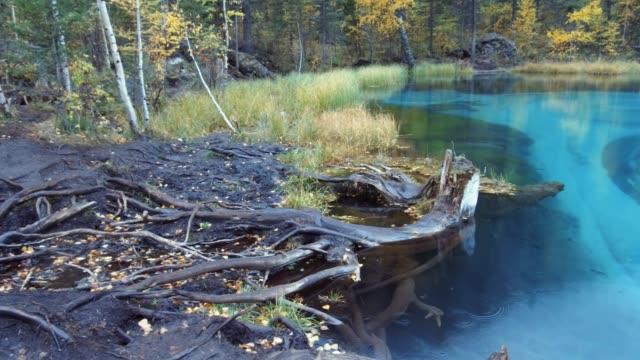雨の日にアルタイ山脈で青い間欠泉湖のパノラマ ビデオ