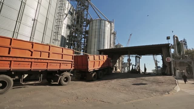 panorama of grain trucks driving to unload at silo on elevating hydraulic platform unloader. grain crops transshipment at big sea terminal at seaport. logictics concept. unloading grain at silo - kukurydza jarzyna filmów i materiałów b-roll