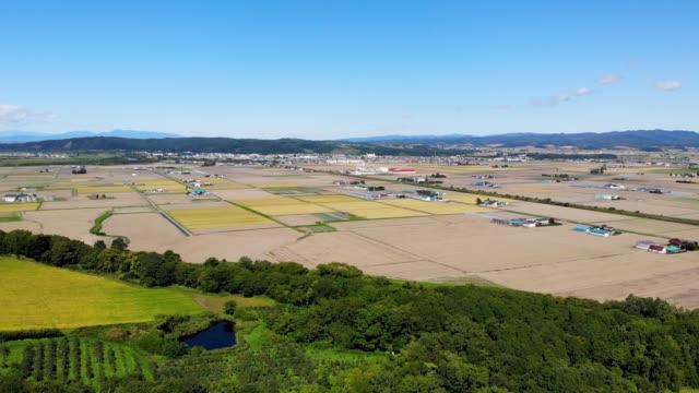 panoramavy över vacker stor jordbruksmark i naganuma town, hokkaido, japan - hokkaido bildbanksvideor och videomaterial från bakom kulisserna