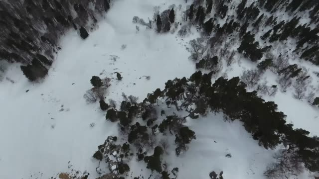 Panoramic aerial view of snowfall in mountainous wooded area