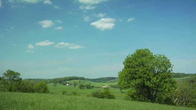 Panoramic Green Landscape. video