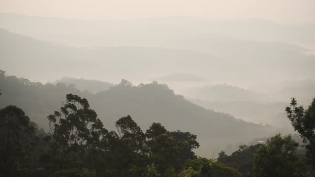 Panoramic landscape view of mountains and hills on a misty morning, in Munnar, India