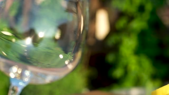panoramic shot of a large empty wine glass on the background of green nature