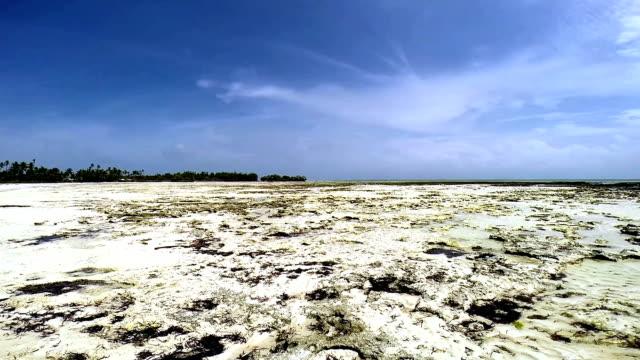 panoramic view of beach with low tide - ekvatorn latitud bildbanksvideor och videomaterial från bakom kulisserna