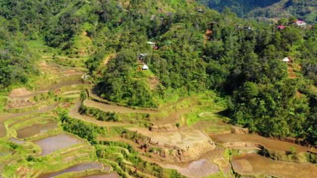 Panoramic view of rice terraces in Philippines. Beautiful landscape of agriculture in a valley in the middle of mountains in a wonderful day - 4K Banaue's rice terraces with small farms and houses in nature. One of the most beautiful agriculture in Philippines, with the most wonderful view.  Perfect landscape in an amazing place, with the respect of environment banaue stock videos & royalty-free footage