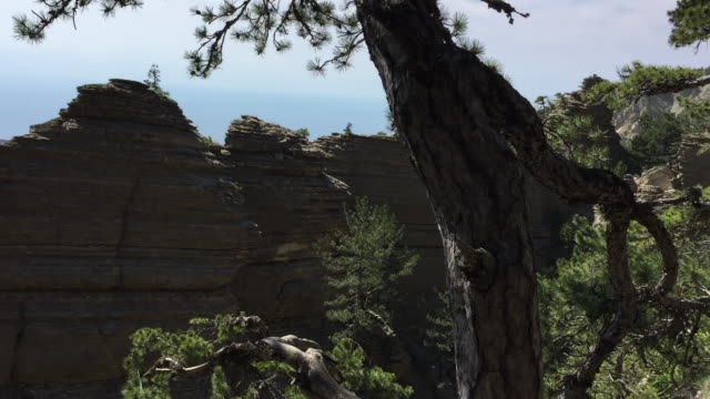 Panoramic view on mountains, trees and rocky wall among hills from mountainside.