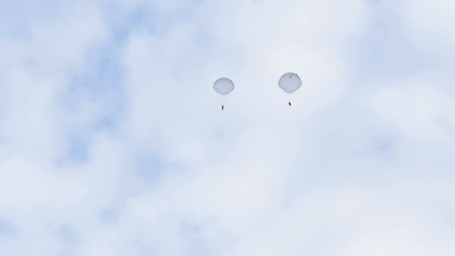 Parachutists fly in the sky - slowmotion 60fps video