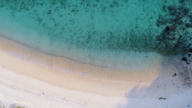Paradise beach aerial view stock video