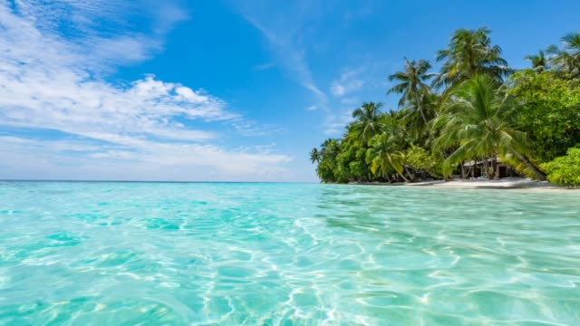 paradisiac beach at maldives - exotic stock videos & royalty-free footage