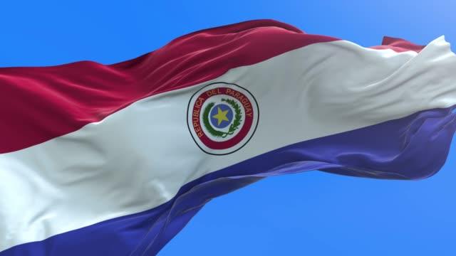 paraguay - 3d realistic waving flag background - парагвай стоковые видео и кадры b-roll