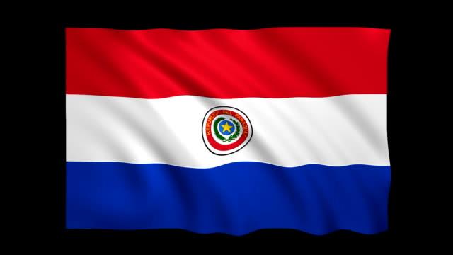 парагвай флаг loopable матовый включен - фондовый видео - парагвай стоковые видео и кадры b-roll