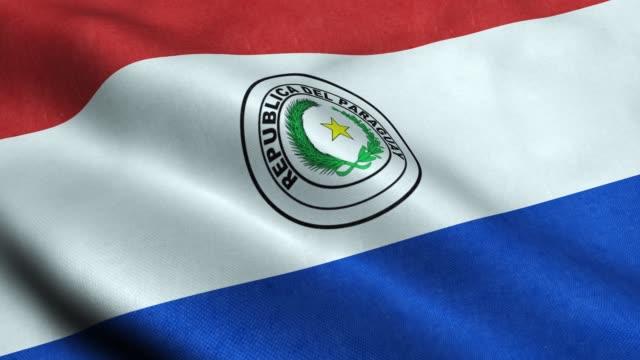 paraguay flag seamless looping waving animation - парагвай стоковые видео и кадры b-roll