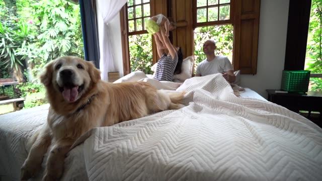 genitori che si divertono con una figlia carina a letto - bambino cane video stock e b–roll