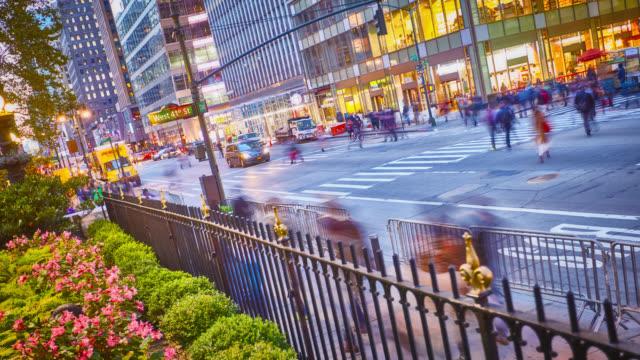 Parque y calle de la ciudad - vídeo