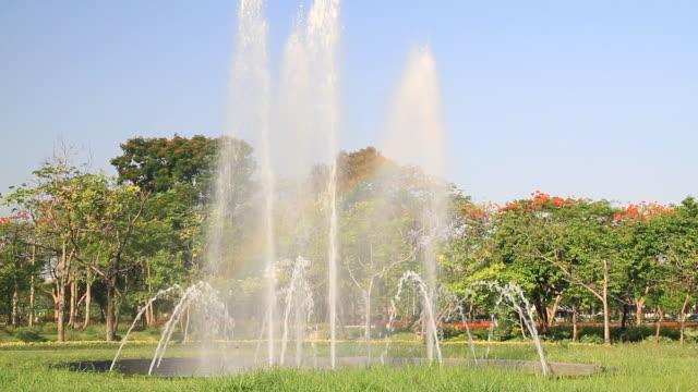 公園の噴水します。 - 造園点の映像素材/bロール