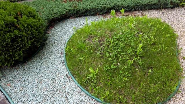 Park paths in the garden. video
