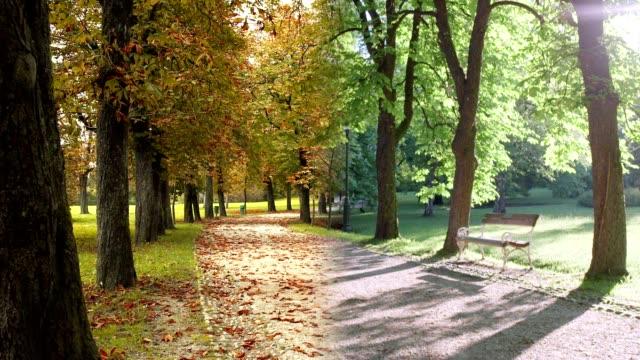 4 seasons park gehweg - vier jahreszeiten stock-videos und b-roll-filmmaterial