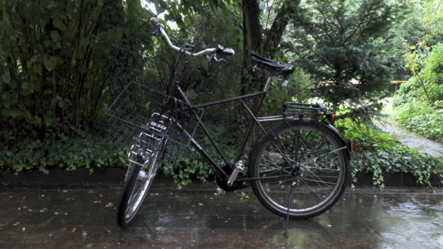 Parked Bicycle in Rainy Backyard