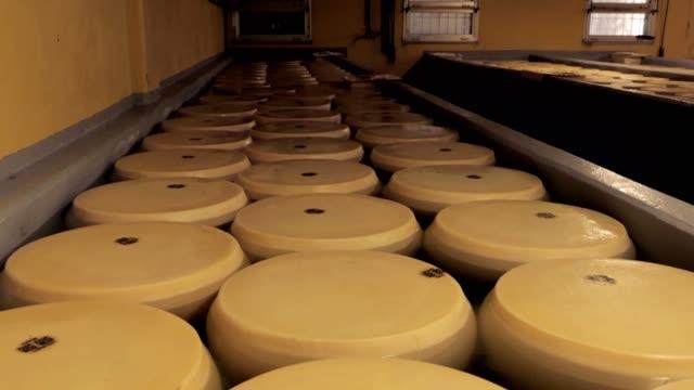 vidéos et rushes de fromage parmesan, maturation en saumure, parmigiano reggiano en eau salée - parmesan