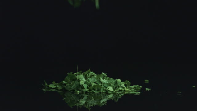Parsley (cilantro) falling down. video