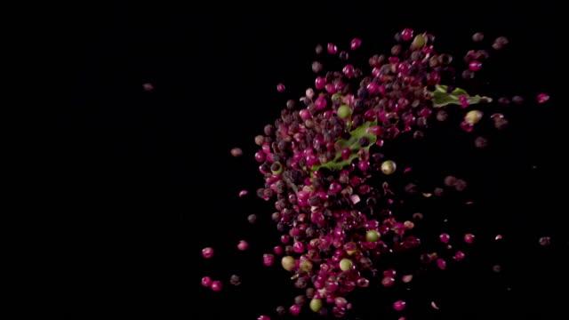 vídeos y material grabado en eventos de stock de perejil, peppercorns, bay leaves, oregano, sea-salt, rosemary colliding in the air super slow motion video 1000 fps - ingrediente