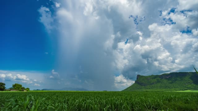 Partial Storm Clouds and Rain with Blue Sky Over Green Farm video