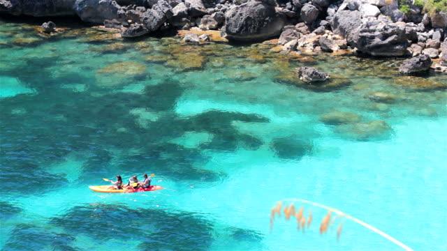Paseo en Kayak Familia navegando en kayak. daylight savings stock videos & royalty-free footage
