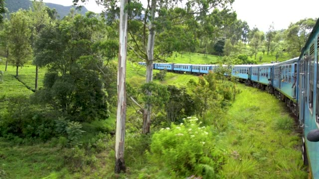 Passenger view of a classic train of Sri Lanka, on a trip in rural countrysides from Ella to Nuwara Elia. A must every visitor do. This is a part of a beautiful and very touristic train route from Ella to Huton, Sri Lanka sri lanka stock videos & royalty-free footage