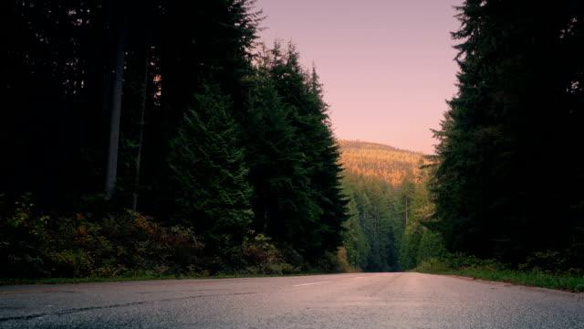 durchgangsverkehr durch wald bergstraße im morgengrauen - vancouver kanada stock-videos und b-roll-filmmaterial