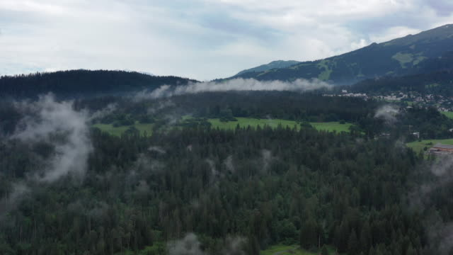 passing the cloud and fly over the forest in Switzerland
