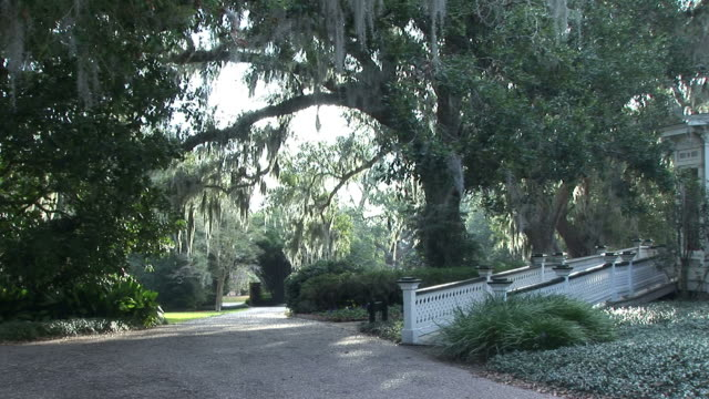 Path to a Southern Home video